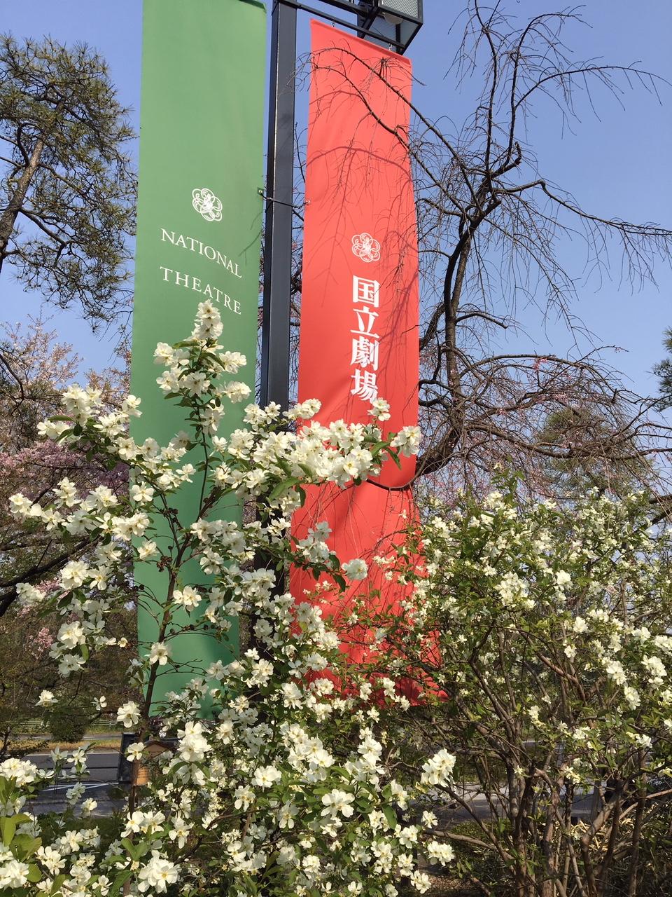 春は演奏会☆.。.:*・゜